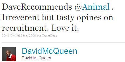 Twitter - David McQueen- DaveRecommends @Animal . I ...SMALL_2672107450-090716